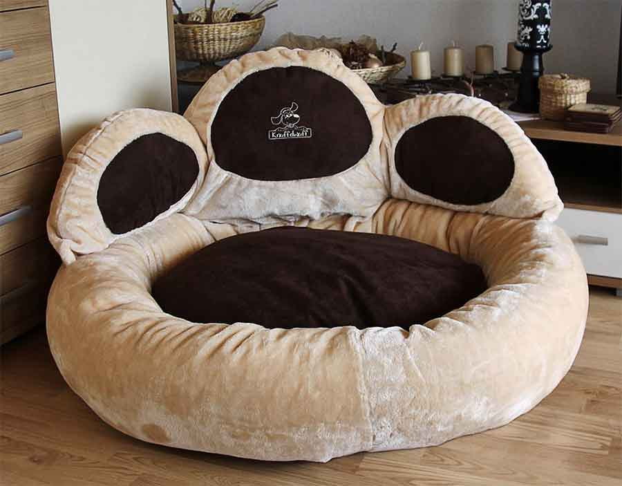 Best Dog Beds For Staffies Comfy Durable And High